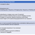 Design Features of Kittiwake Nesting and Feeding Tower